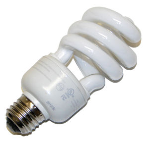 NO incandescent light bulbs, only LED & Compact Fluorescent